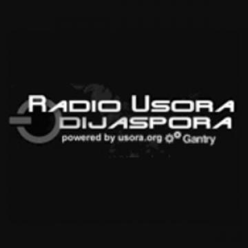 Radio Usora Izvorna